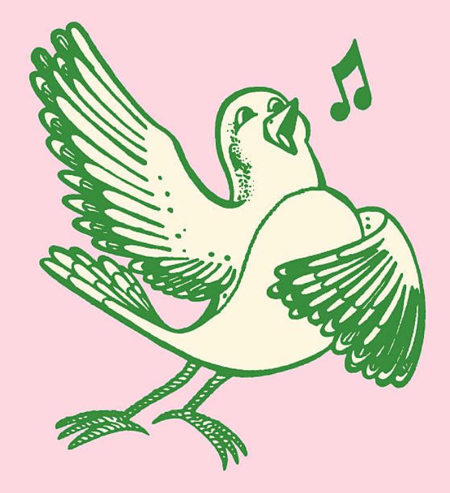 singing bird_pink